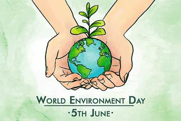 WORLD ENVIRONMENT DAY Essay