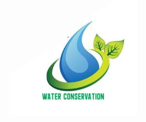 Water Conservation Essay