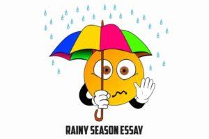 It essay