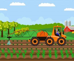 Agriculture in India Essay