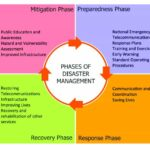 Disaster management essay